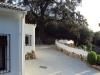 arbol-casa-rural