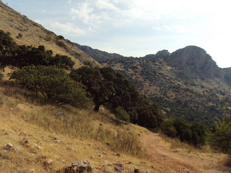 paisaje-rural (1)
