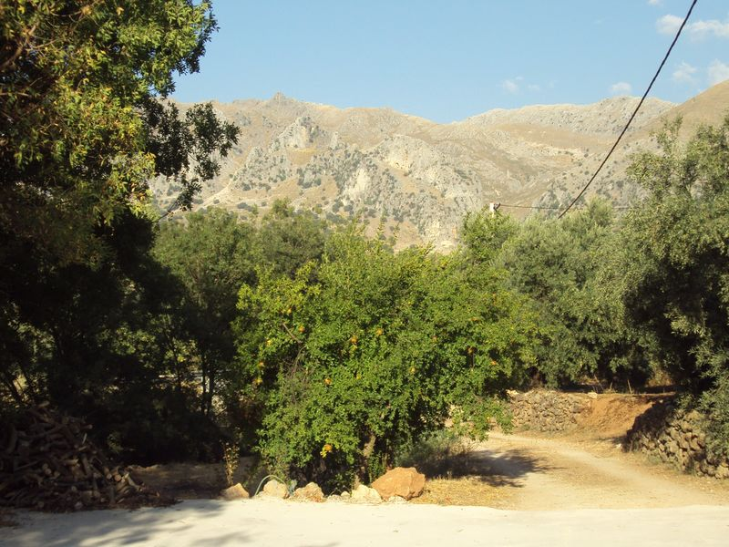 paisaje-rural (3)